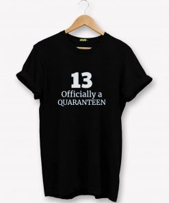 13 Year Old Birthday T-Shirt PU27